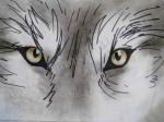 Wolf Eyes, chalk pastel still, Flash Animatic by Lauryn Medeiros
