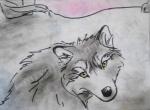Wolf looking back, chalk pastel still, Flash Animatic by Lauryn Medeiros