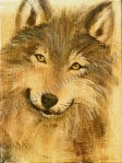 Happy Wolf, painting by Lauryn Medeiros
