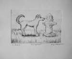 Drypoint by Lauryn Medeiros, printmaking, drypoint, fire hydrant, dog