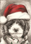 graphite drawing by Lauryn Medeiros, graphite, drawing, dog, holidays, santa hat, Kruzer