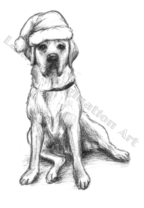 illustration by Lauryn Medeiros, lab, santa hat, dog, Angela R. Stewart, Christmas, graphite