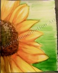 Sunflower, watercolor painting by Lauryn Medeiros
