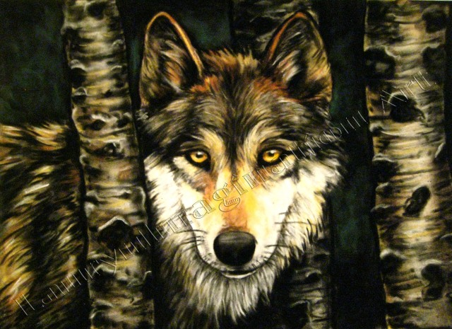 Wolf in Birches, chalk pastel by Lauryn Medeiros