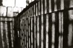Dumpster fence, lighting, light and shadow, black and white, film print by Lauryn Medeiros, photography