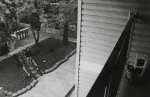 Johnny, cat, balcony, Mike, black and white, film print, photography by Lauryn Medeiros