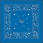 bandana design by Lauryn Medeiros, blue, Boise State, Bronco Shop